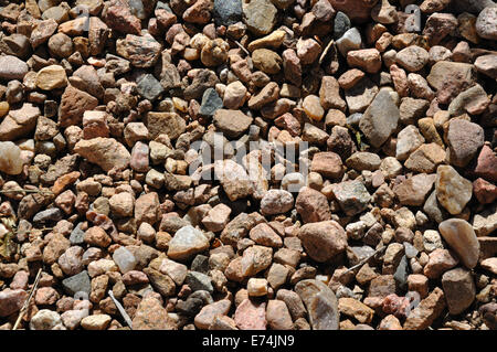 Pebbles on beach - Stock Image
