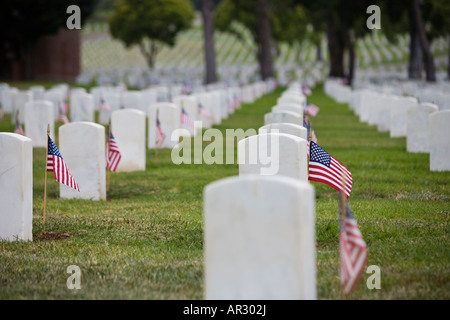 The Veterans cemetery   displaying the American flags. - Stock Image