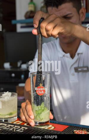 Cuba, Havana. Bartender mixing traditional Cuban cocktail. Credit as: Wendy Kaveney / Jaynes Gallery / DanitaDelimont.com - Stock Image