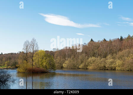 Golden Acre Park, Bramhope, Leeds, West Yorkshire, England UK - Stock Image