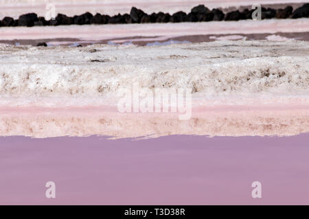 Reflections of salt evaportations in the pink colors of saline water during the production process in the salt fields of Fuencaliente, La Palma Island - Stock Image