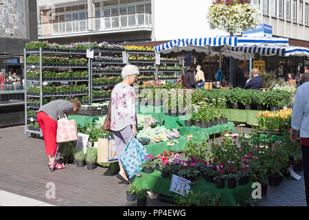 Flower stall in Queensway, Stevenage, Hertforshire - Stock Image