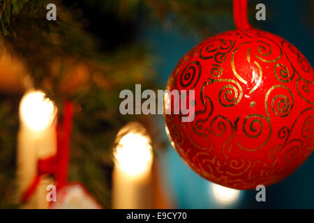 A red bauble is hanging on the Christmas tree. - Stock Image