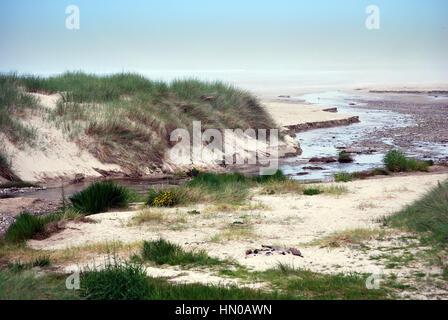 Scottish beach in Islay - Stock Image