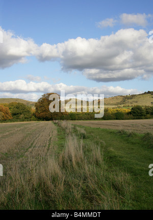 Ivinghoe Beacon and the Chiltern Hills from Pitstone, Buckinghamshire, UK - Stock Image