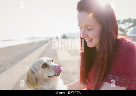 Woman with cute dog on sunny beach boardwalk - Stock Image