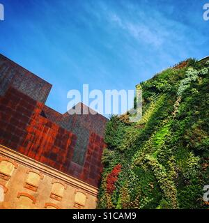 Vertical Garden with modern architecture - Stock Image