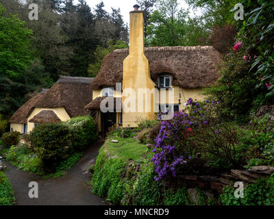 Thatched cottages in Selworthy, the National Trust village in the vale of the Holnicote Estate, Exmoor National Park - Stock Image