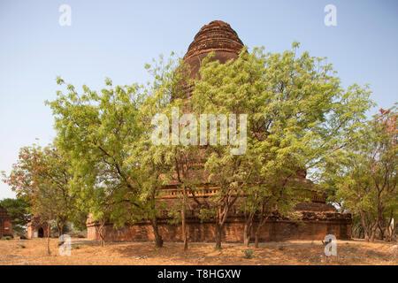 Stupa near Sulamani temple, Old Bagan village area, Mandalay region, Myanmar, Asia - Stock Image