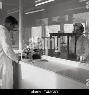 1950s, historical, scientists in white coats using microscopes working in a research labatory at a nursery or market garden, England, UK, - Stock Image