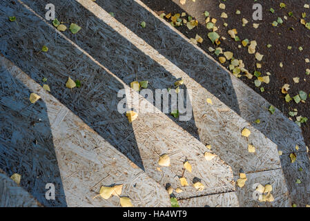 Wooden steps in natural sunlight with autumn leaves. - Stock Image