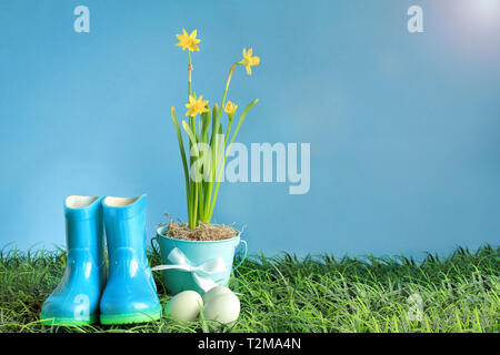 Natural Easter eggs, rubber rain boots and yellow daffodil flowers in grass against a blue background with room for copy space. - Stock Image
