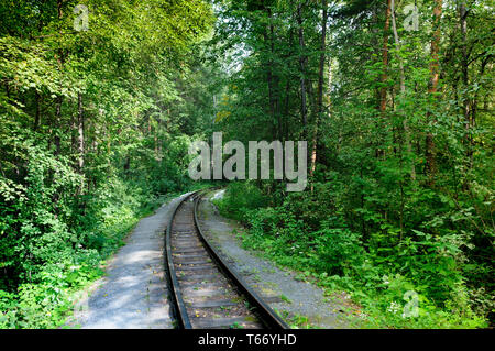 Scenic one way old railroad in rural area with green trees - Stock Image
