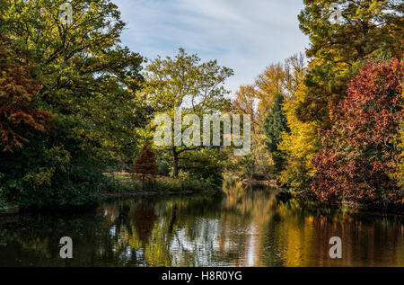 Autumn view of trees reflected in lake - Stock Image