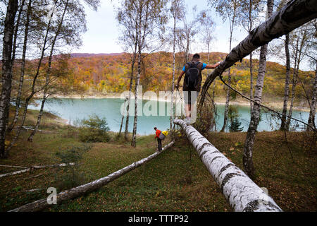 Male backpackers walking on tree branch by river in forest - Stock Image
