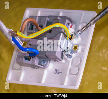 Closeup of connections for blue, brown and green/yellow wires, with a screwdriver on a terminal, behind the on/off switch for a UK standard appliance. - Stock Image