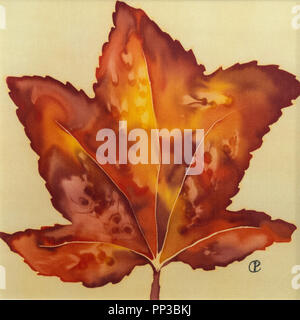 Photograph of silk painting of single colourful Autumn Maple leaf using steam fixed dyes by Paula Chapman - Stock Image
