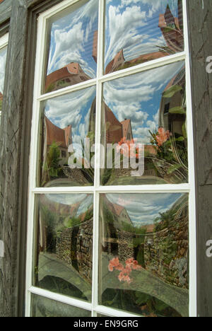 Old glass window with multiple flower reflections - Stock Image