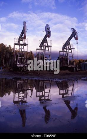 Idle Pumpjacks at the Priobskoye Oil field in Western Siberia, 100km West of Nefteyugansk, Russia - Stock Image