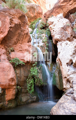Small waterfall in a side canyon in the Grand Canyon - Stock Image