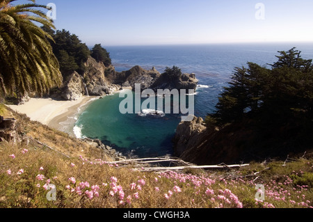 McWay Cove Big Sur - Stock Image