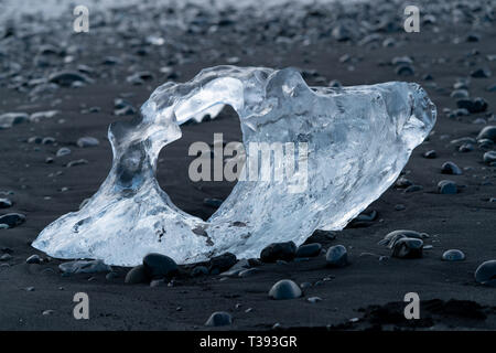 Icebergs at the black sand Diamond Beach, Joekulsarlon, Iceland - Stock Image