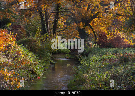 River Wey in autumn feeds the stream to the former watermill at Elstead, Surrey, England - Stock Image