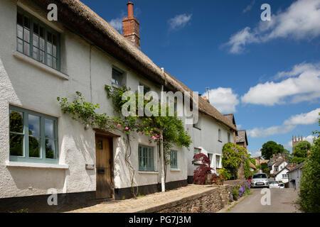 UK, England, Devon, Sampford Courtenay, Bank Cottage, idyllic thatched cottage with roses around the door - Stock Image