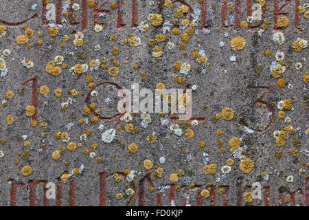 Year 1943 carved in stone covering with moss. The years of World War II. - Stock Image