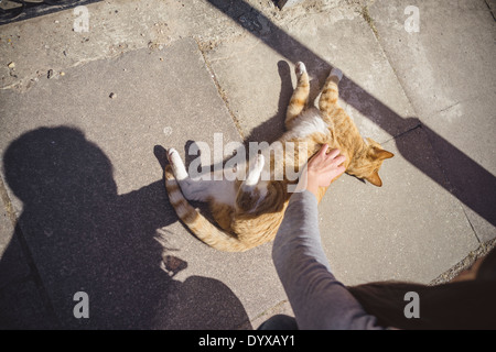 The hand of a woman pets a cat on the street while the cat lies down on the floor in London, United Kingdom. - Stock Image