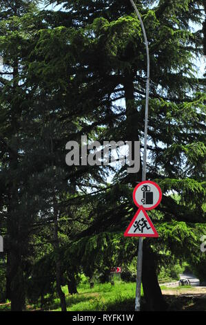 Street sign on the lam, one turned unnaturally. - Stock Image