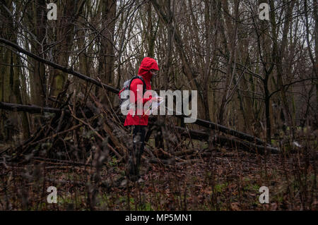 Walker in forest using compass to find way - Stock Image