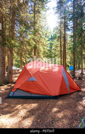 Morning sunrise over camping tent in the summer wilderness of Banff National Park in Canada with surrounding pine trees. - Stock Image