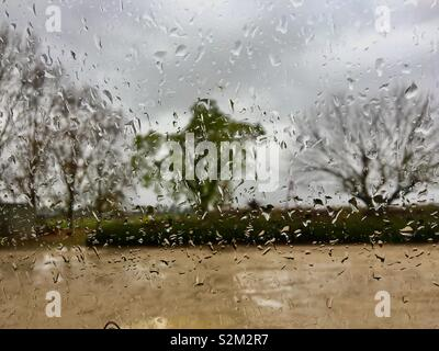 Rainy day weather with water droplets on window giving a distorted view of trees - Stock Image
