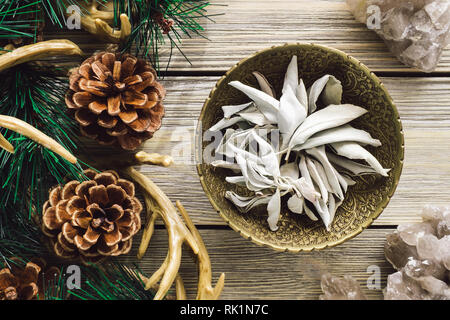 Brass Bowl of White Sage with Quartz in Woodland Setting - Stock Image