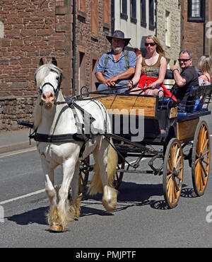 Gypsy Travellers riding on carriage. Appleby Horse Fair 2018. The Sands, Appleby-in-Westmorland, Cumbria, England, United Kingdom, Europe. - Stock Image