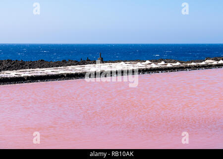 Pink coloured water during the salt evaporation process in salt field of Fuencaliente, La Palma, Canary Islands. The pink color  is caused by a haloph - Stock Image