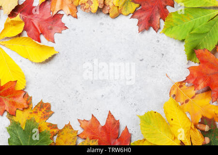 Autumn backdrop with colorful leaves over stone background. Top view with space for your text - Stock Image
