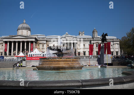 London, UK. 20th Apr, 2019. Preparations get underway for The Feast of St George in Trafalgar Square, London. Glorious sunshine adds to the English Country Garden feel with the hottest Easter for over 70 years forecast. Credit: Keith Larby/Alamy Live News - Stock Image