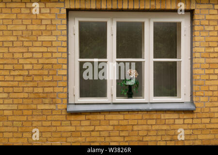 Flowers in the window of the Historic Employment Office (Historisches Arbeitsamt) in Dessau, Germany. The building was designed by Walter Groupius, th - Stock Image