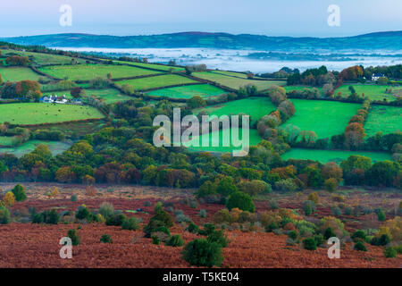 Morning at Hayne Down, Dartmoor National Park, Manaton, Devon, England, United Kingdom, Europe - Stock Image