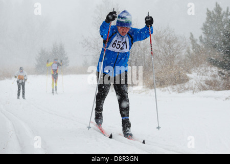 Heavy snow falls as competitors ski in the Mora Vasaloppet 42 km classic category on February 10, 2013 near Mora, - Stock Image