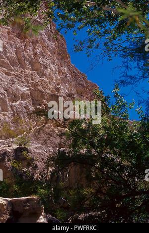 Montezuma Castle National Monument, Camp Verde, Arizona, USA - Stock Image