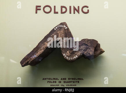 A specimen of a folded rock. The Field Museum, Chicago, Illinois, USA. - Stock Image