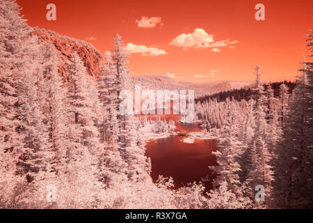 USA, California, Mammoth Lakes. Infrared overview of Twin Lakes. - Stock Image