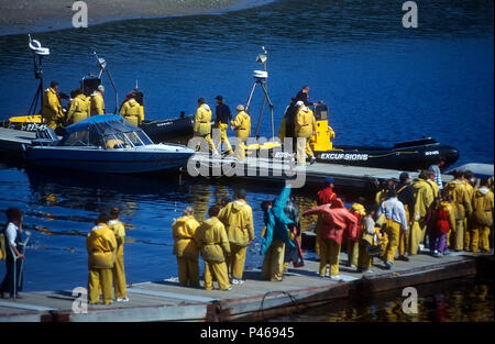 People queueing to get in their zodiac for a whale watching trip at Tadoussac, Quebec - Stock Image