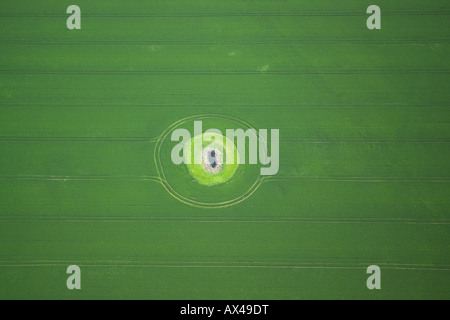 Aerial view of a dew pond in the middle of an arable field - Stock Image