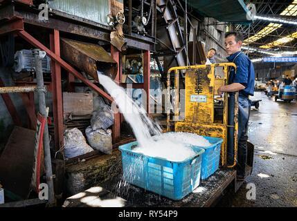Japan, Honshu island, Kanto, Tokyo, Tsukiji fish market, producing crushed ice - Stock Image
