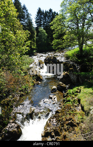 The River Tweed as it passes by the village of Tweedsmuir, Dumfries & Galloway - Stock Image