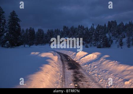 Headlights illuminate snowy winter road, with home in distance, Flagstaff, Arizona, USA - Stock Image